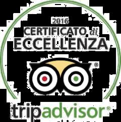badge-tripadvisor